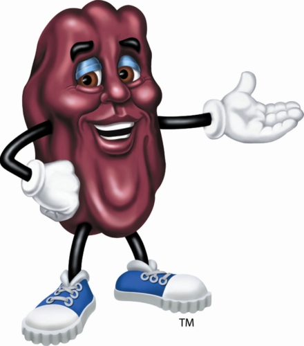 CALIFORNIA RAISIN MARKETING BOARD NATIONAL RAISIN DAY